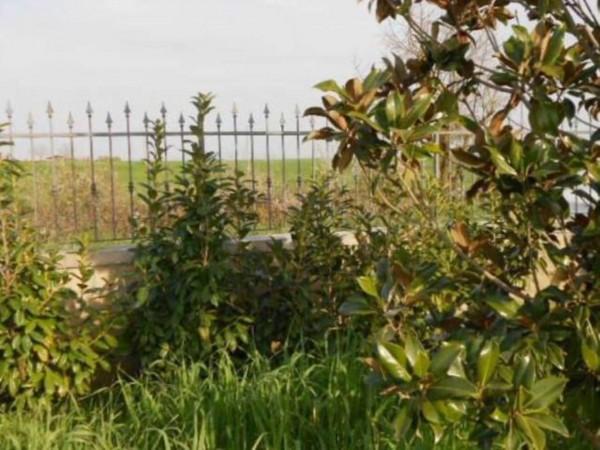 Villa in vendita a Tuscania, Con giardino, 360 mq - Foto 11