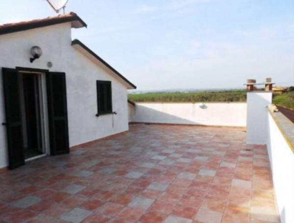 Villa in vendita a Tuscania, Con giardino, 360 mq - Foto 20