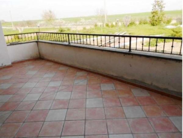 Villa in vendita a Tuscania, Con giardino, 360 mq - Foto 8