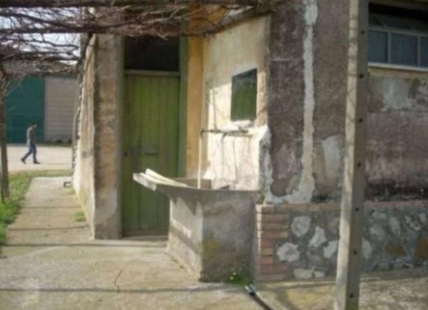 Rustico/Casale in vendita a Tuscania, Con giardino, 180 mq - Foto 4