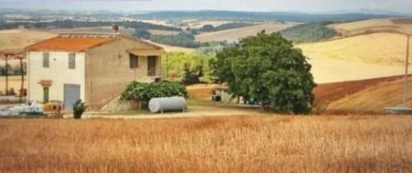 Rustico/Casale in vendita a Tuscania, Con giardino, 180 mq