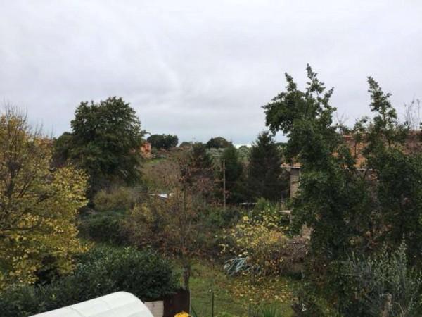 Villetta a schiera in vendita a Vetralla, Con giardino, 140 mq - Foto 7