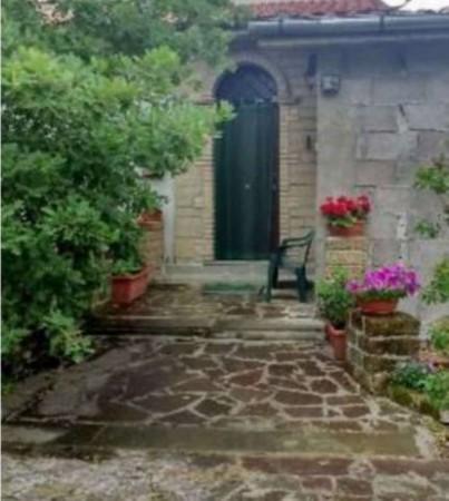 Rustico/Casale in vendita a Vetralla, Con giardino, 400 mq