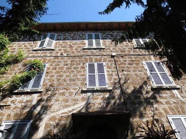 Villa in vendita a Vetralla, Con giardino, 558 mq - Foto 6