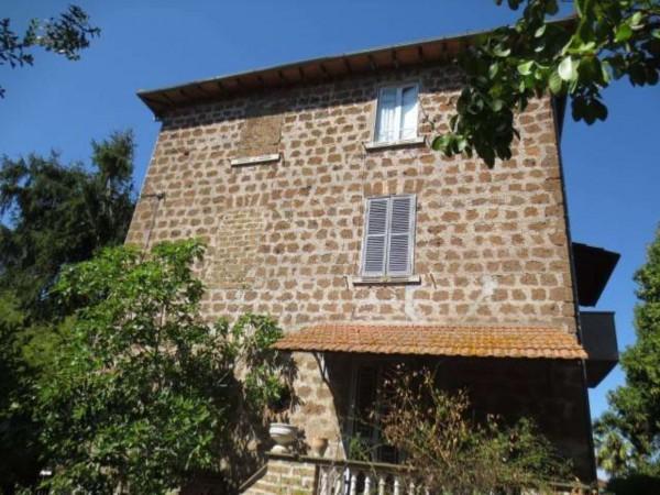 Villa in vendita a Vetralla, Con giardino, 558 mq