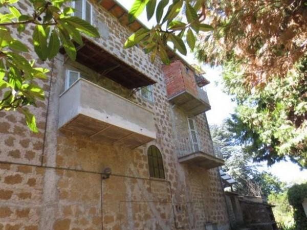Villa in vendita a Vetralla, Con giardino, 558 mq - Foto 8