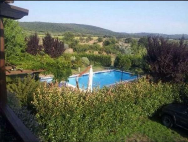 Villa in vendita a Vetralla, Con giardino, 2416 mq - Foto 21