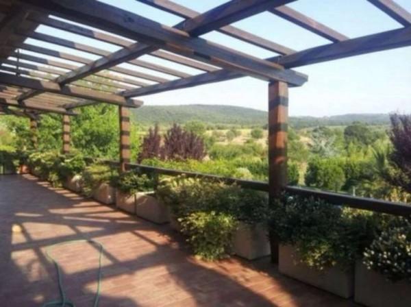 Villa in vendita a Vetralla, Con giardino, 2416 mq - Foto 8