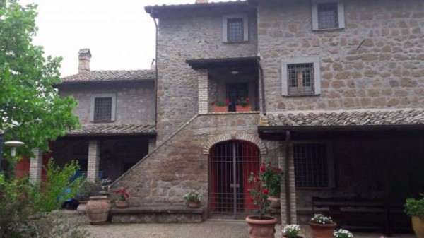 Rustico/Casale in vendita a Vetralla, Con giardino, 349 mq - Foto 1