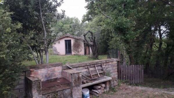 Rustico/Casale in vendita a Vetralla, Con giardino, 349 mq - Foto 18