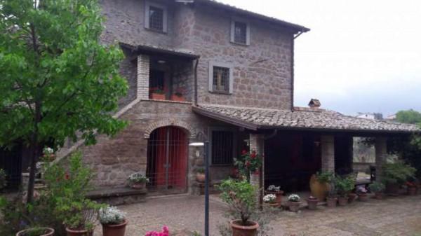 Rustico/Casale in vendita a Vetralla, Con giardino, 349 mq - Foto 21