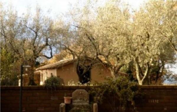 Rustico/Casale in vendita a Vetralla, Con giardino, 349 mq - Foto 11