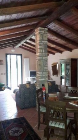 Rustico/Casale in vendita a Vetralla, Con giardino, 349 mq - Foto 5