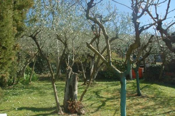 Rustico/Casale in vendita a Trevi, Pigge Di Trevi, Con giardino, 170 mq - Foto 23