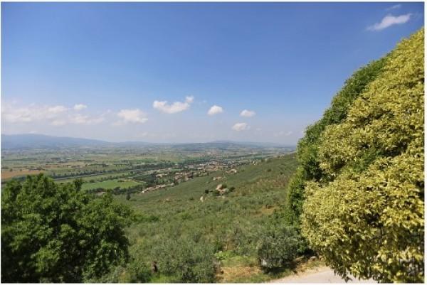 Rustico/Casale in vendita a Trevi, Pigge Di Trevi, Con giardino, 170 mq - Foto 12