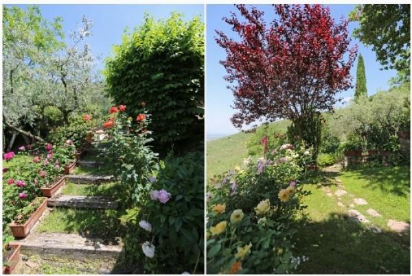 Rustico/Casale in vendita a Trevi, Pigge Di Trevi, Con giardino, 170 mq - Foto 2
