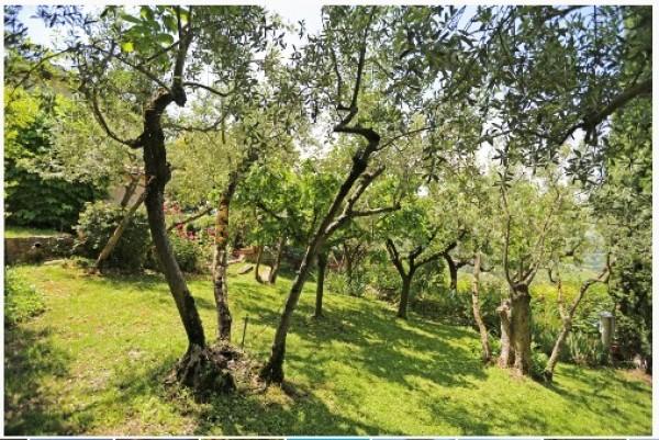 Rustico/Casale in vendita a Trevi, Pigge Di Trevi, Con giardino, 170 mq - Foto 9