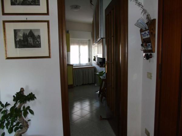Appartamento in vendita a Roma, Statuario - Appia Nuova, Con giardino, 65 mq - Foto 12