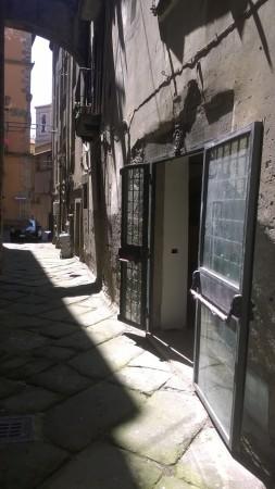Locale Commerciale  in affitto a Viterbo, Centro Storico, Con giardino, 220 mq - Foto 9