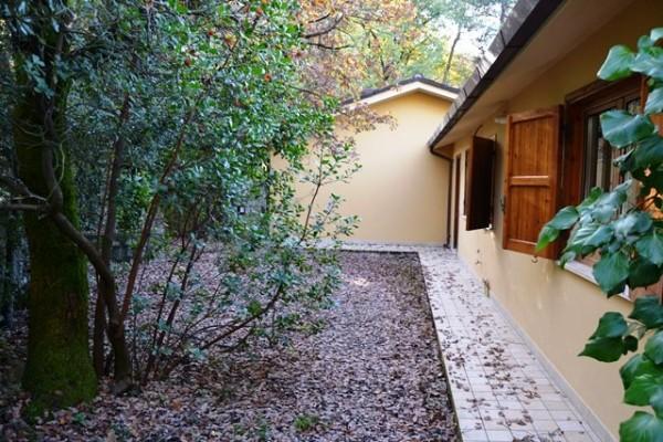 Villetta a schiera in vendita a Spoleto, Loc. Torricella, Con giardino, 85 mq - Foto 2