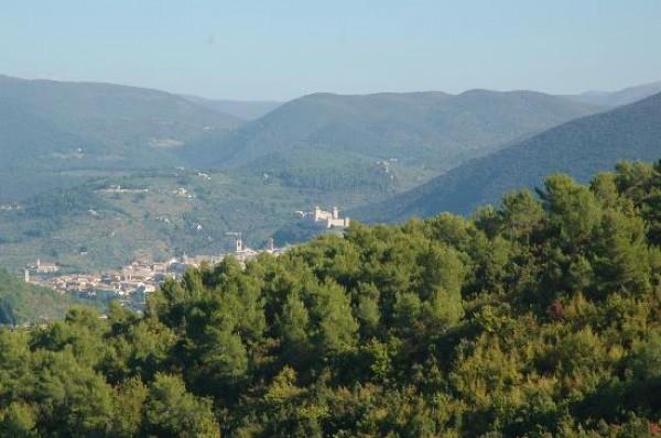 Rustico/Casale in vendita a Spoleto, A 4 Km Da Spoleto, Con giardino, 120 mq - Foto 2