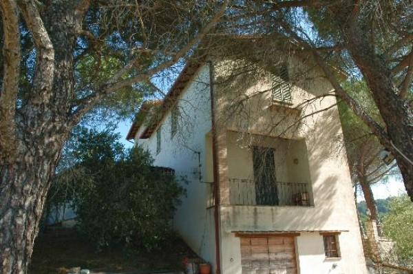 Rustico/Casale in vendita a Spoleto, A 4 Km Da Spoleto, Con giardino, 120 mq - Foto 13