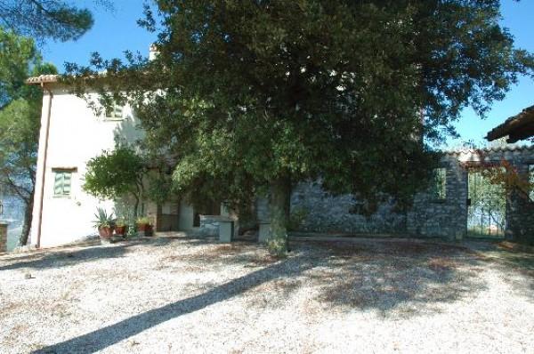 Rustico/Casale in vendita a Spoleto, A 4 Km Da Spoleto, Con giardino, 120 mq - Foto 11
