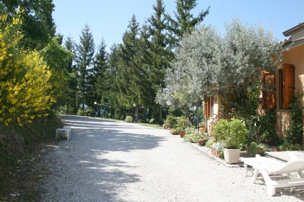 Villa in vendita a Spoleto, A 4 Km Da Spoleto, Con giardino, 220 mq - Foto 6