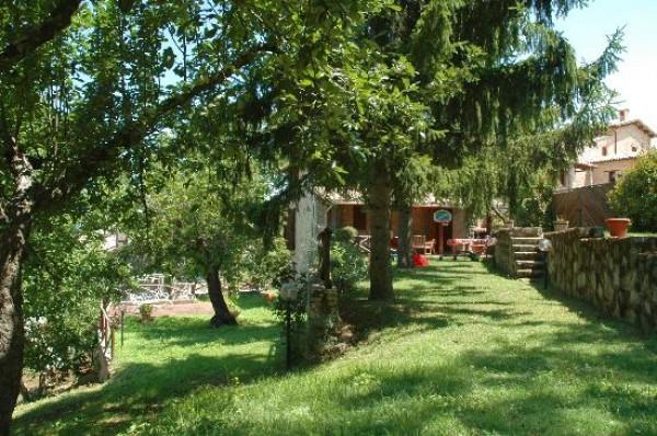 Rustico/Casale in vendita a Spoleto, Frazione Di Spoleto, Con giardino, 100 mq - Foto 7