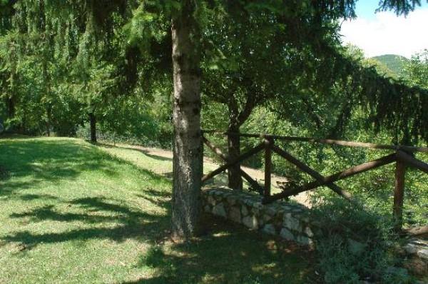 Rustico/Casale in vendita a Spoleto, Frazione Di Spoleto, Con giardino, 100 mq - Foto 9