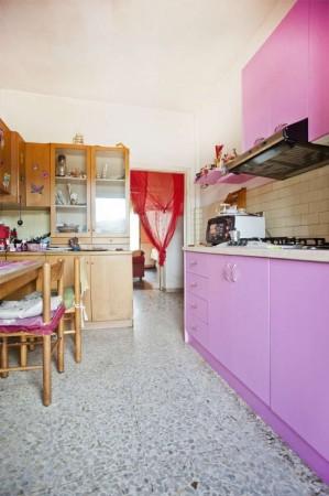 Appartamento in vendita a Orbetello, Orbetello Scalo, 100 mq - Foto 4