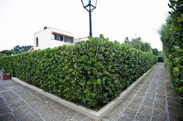 Villetta a schiera in vendita a Montalto di Castro, Foce Vecchia, Arredato, con giardino, 70 mq - Foto 24
