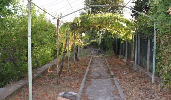 Appartamento in vendita a Genzano di Roma, Ville Di Nemi, Con giardino, 130 mq - Foto 2