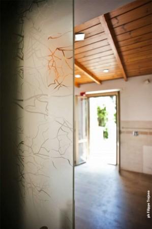 Appartamento in vendita a Rocca di Papa, Con giardino, 85 mq - Foto 11