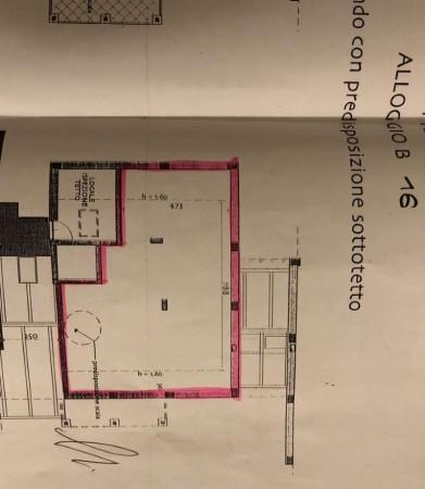 Appartamento in vendita a Pianezza, San Pancrazio, Con giardino, 140 mq - Foto 2
