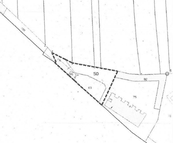 Immobile in vendita a Collegno, Savonera, Con giardino, 658 mq - Foto 2