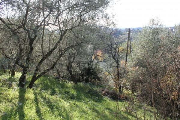 Villa in vendita a Casperia, Con giardino, 300 mq - Foto 4