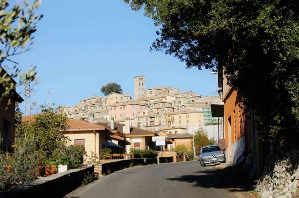 Villa in vendita a Casperia, Con giardino, 300 mq - Foto 23