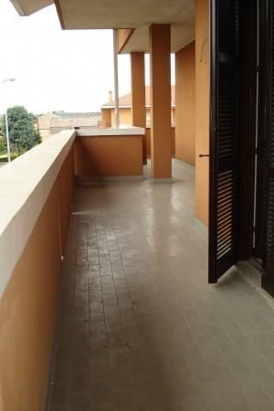 Appartamento in affitto a Cesate, Con giardino, 180 mq - Foto 9