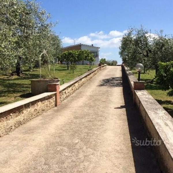 Villa in vendita a Velletri, Fienili, Con giardino, 350 mq - Foto 6