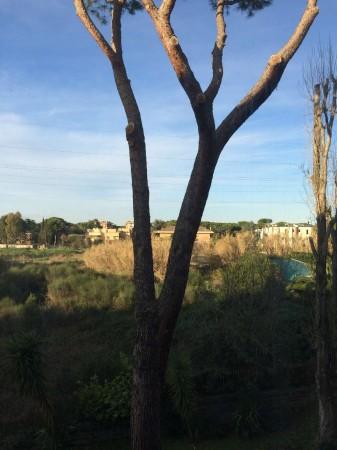Appartamento in vendita a Roma, Spinaceto, Con giardino, 130 mq - Foto 3