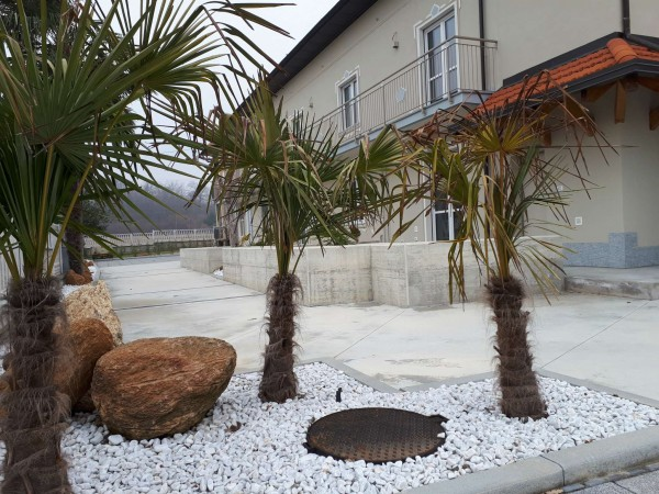 Appartamento in vendita a Fiano, 80 mq - Foto 7