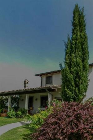 Villa in affitto a Tuscania, Arredato, con giardino, 200 mq