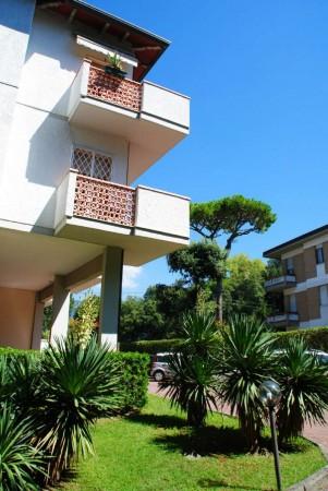 Appartamento in vendita a Massa, I Ronchi, Con giardino, 80 mq