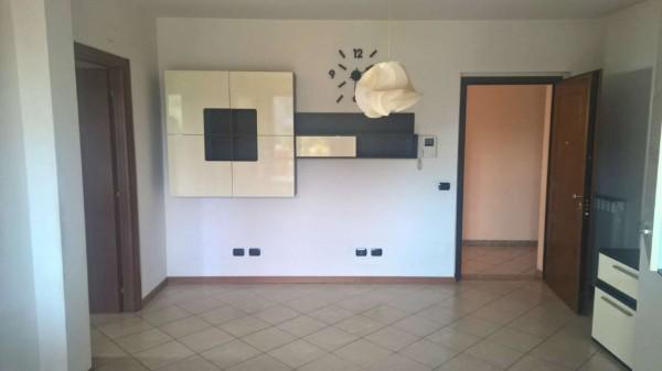 Appartamento in affitto a Zelo Surrigone, Residenziale, Arredato, con giardino, 60 mq - Foto 12