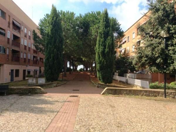 Appartamento in vendita a Roma, Casetta Mattei, Con giardino, 75 mq - Foto 5