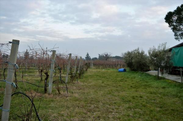 Casa indipendente in vendita a Forlì, Villagrappa, Con giardino, 156 mq - Foto 9