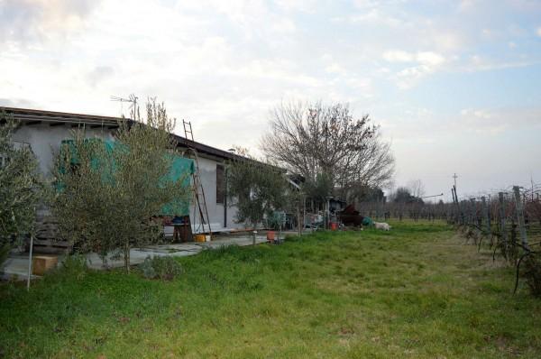 Casa indipendente in vendita a Forlì, Villagrappa, Con giardino, 156 mq - Foto 10