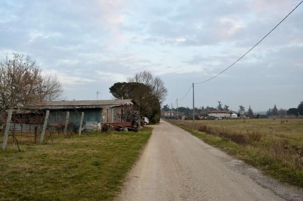Casa indipendente in vendita a Forlì, Villagrappa, Con giardino, 156 mq - Foto 2