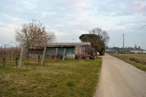 Casa indipendente in vendita a Forlì, Villagrappa, Con giardino, 156 mq - Foto 13